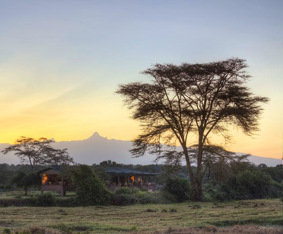 Ol Pejete Bush Camp, Kenya