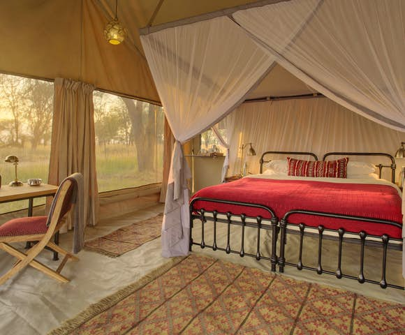 Morning light at Kimondo Migration Camp, Serengeti