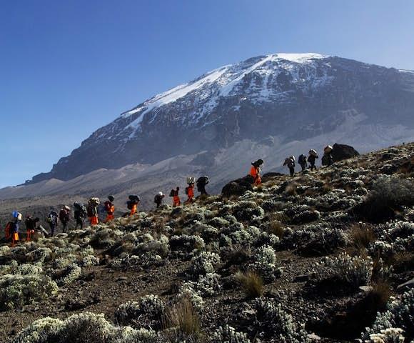 Hiking in Kilimanjaro, Tanzania